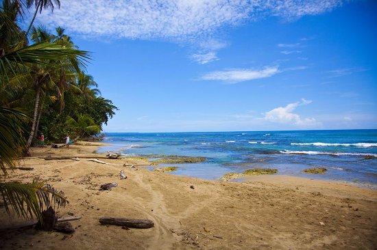 Playa Chiquita, Costa Rica: Playas llenas de verdor.
