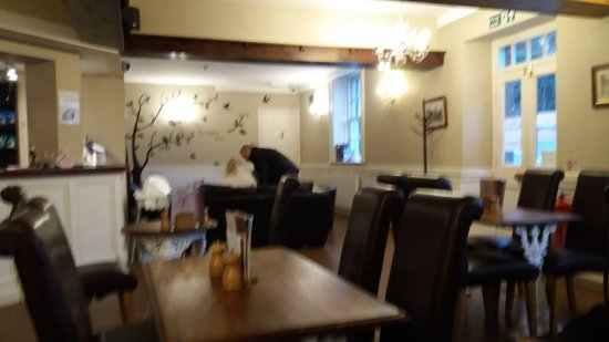 The Family Tree Restaurant: the lounge