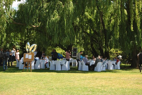Blandford Manor : Champagne brunch under the trees.