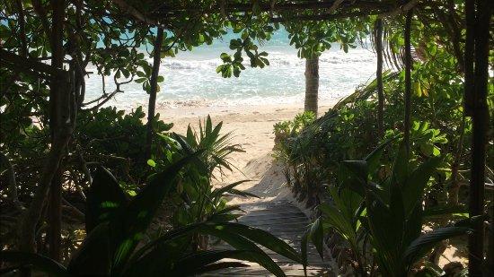 Casa de las Olas: canopy walkway to the beach