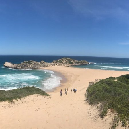 Garden Route (Tsitsikamma, Knysna, Wilderness) National Park: photo1.jpg