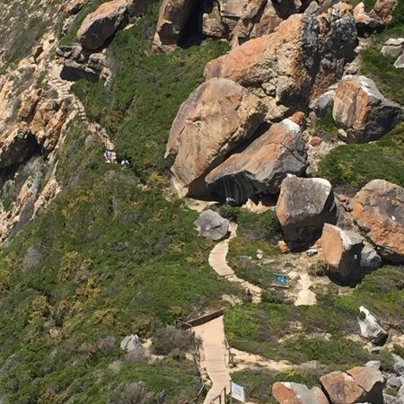 Garden Route (Tsitsikamma, Knysna, Wilderness) National Park: photo2.jpg