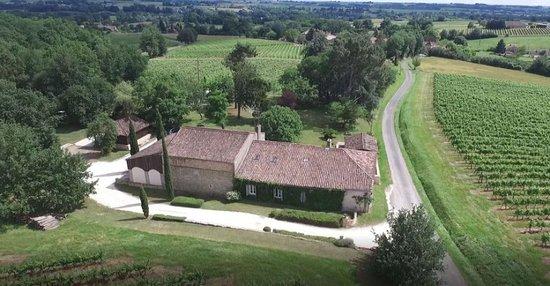 Chateau Haut de Lerm - EARL Vignobles Gonthier