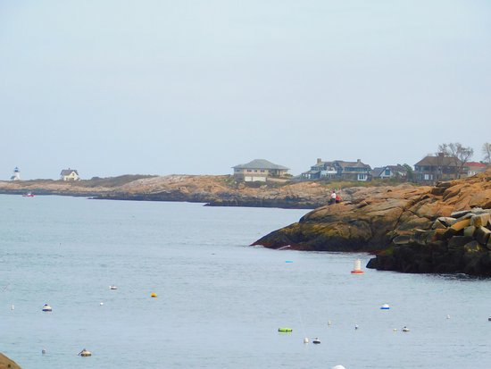 My Place by the Sea: One of the views from across the street