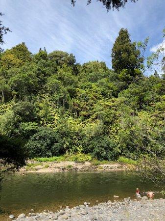 Owhango, New Zealand: Whakapapa River