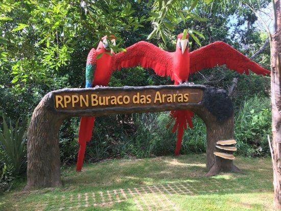 Jardim, MS : photo1.jpg