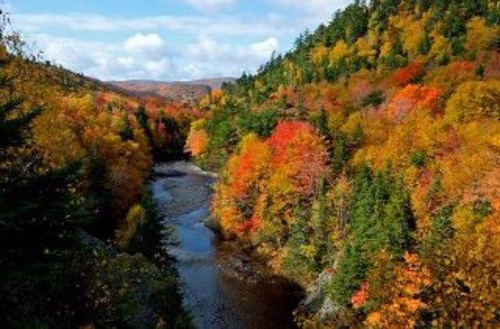 ‪‪Madi G's Custom Tours‬: Fall in Cape Breton‬