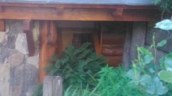 Lirolay Suites : entrada a habitacion, ventanal del baño