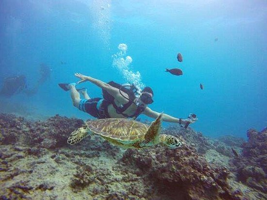 Oahu Diving: My cousin with Crush.