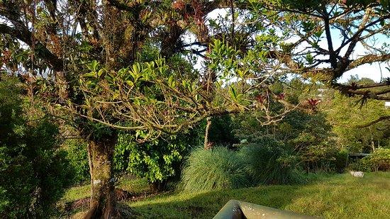 View from the porch picture of villa zurqui hotel san for Villas zurqui