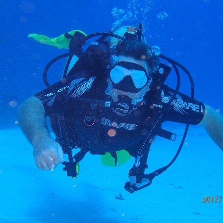 Palancar Reef: photo6.jpg