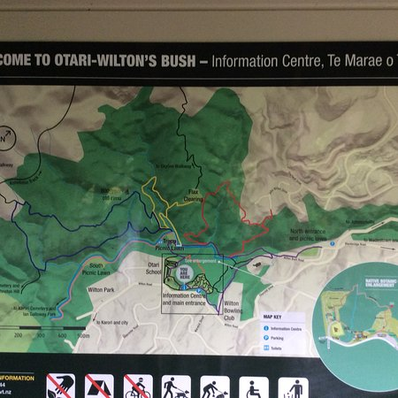 Otari-Wilton's Bush Native Botanic Garden: photo0.jpg
