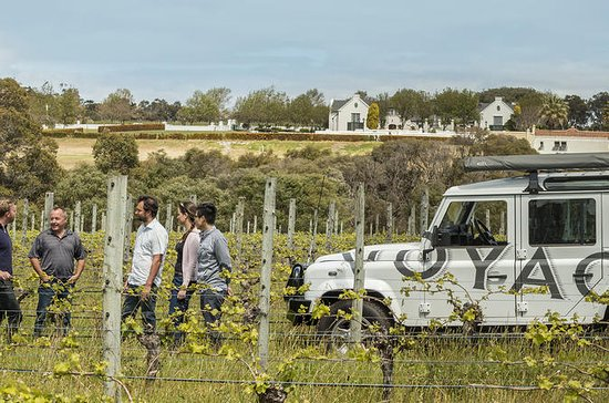 Voyager Estate Margaret River: Winery Tour and Tasting with 4-Course...