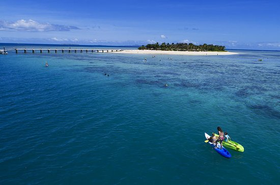 Full-Day Tivua Island Day Cruise with...