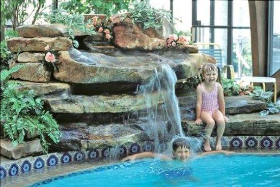 Sun Viking Lodge : Pool