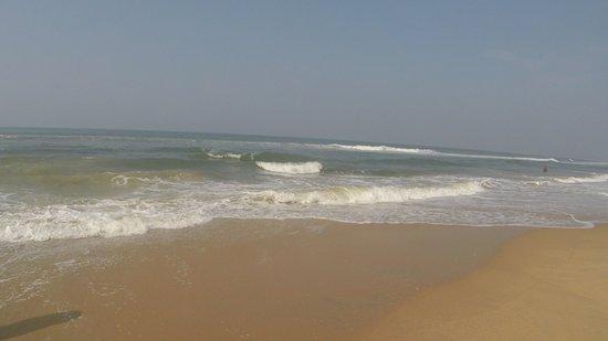 Papasnanam Beach: Arabian Sea