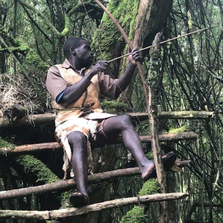 Mgahinga Gorilla National Park, Uganda: photo8.jpg