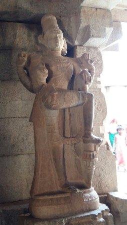 Mahendra Travel: Viaggio Rajasthan india