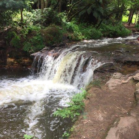 Kerosene Creek: photo1.jpg