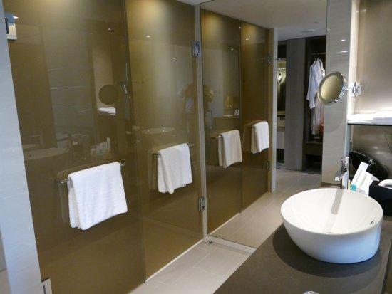 bad waschbecken carlton hotel singapore dusche und getrennt verstopft