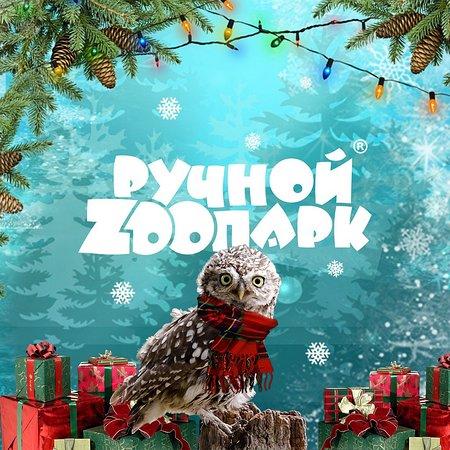 "Tolyatti, Russland: ""Ручной зоопарк"""