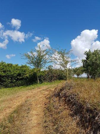 Bonnievale, Sudáfrica: Enjoy walks on the farm