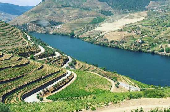 Private Douro Valley Food and Wine...