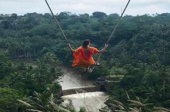Experience Full Day to Bali Swing...