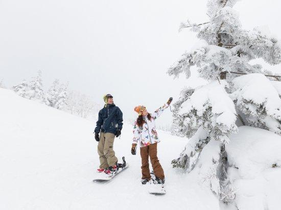 Amihari Onsen Ski Area: 樹氷の中を滑る「双子林間コース」