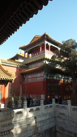 Forbidden City-The Palace Museum: 20180102_024705_large.jpg