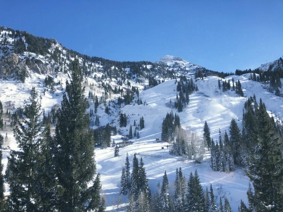 The Cliff Lodge & Spa: Mountain View