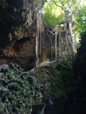 Saturno Cave : IMG-20171130-WA0107_large.jpg