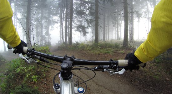 Lanivet, UK: There are many woodland rides nearby