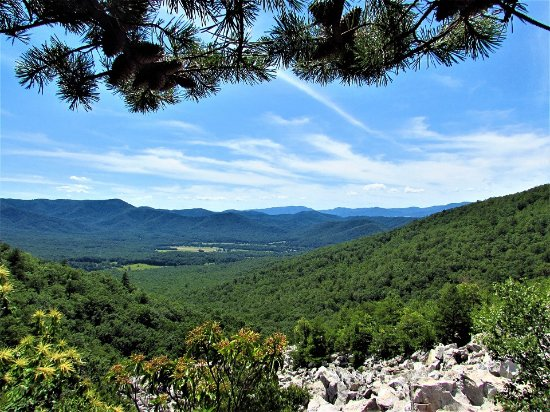 Roanoke, VA: Arnold Valley, Appalachian Mountains near Devils Marble-yard