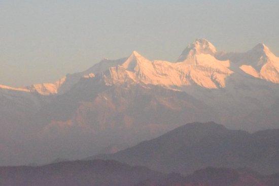Jhaltola, Indien: DSC_9505_large.jpg