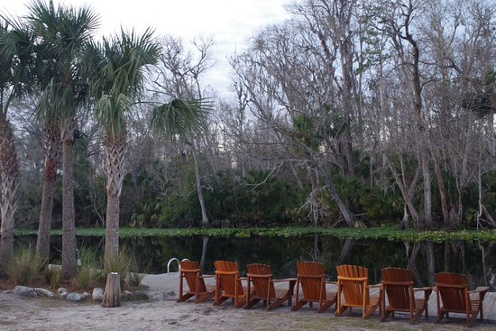 Wekiva Island: You could make a whole day out of hanging out here.