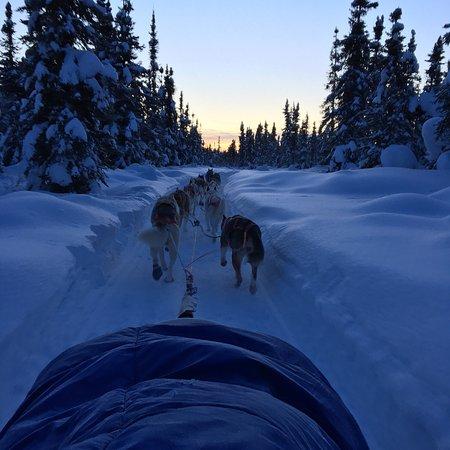 Bettles, Alaska: photo0.jpg