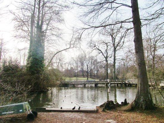 Tierpark Lange Erlen: scenery