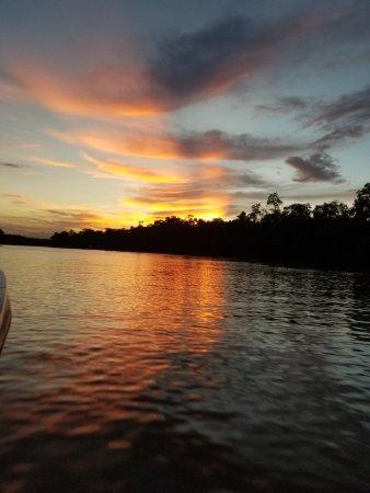 Kota Kinabatangan, Malaysia: Sunset boat tour