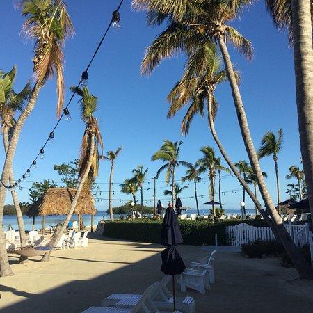 Coconut Palm Inn: photo0.jpg