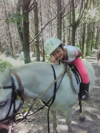 Warkworth, Nova Zelândia: Fell in love with her horse