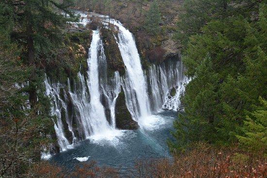 McArthur-Burney Falls Memorial State Park: Top View