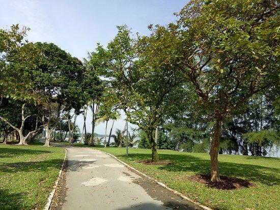 Pasir Ris Town Park