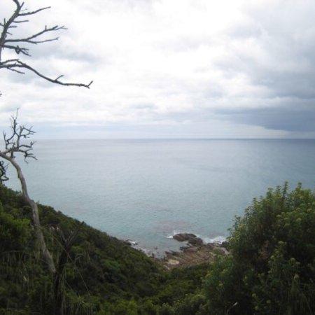 Wye River, Australia: Mount Defiance Lookout