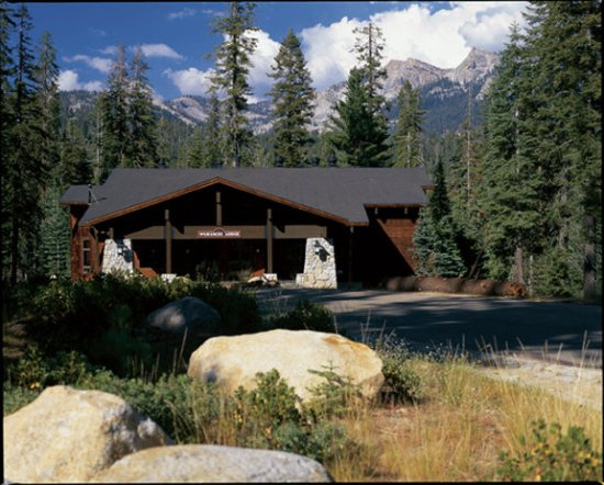Wuksachi Lodge Sequoia And Kings Canyon National Park Hotel Reviews Photos Rate Comparison Tripadvisor