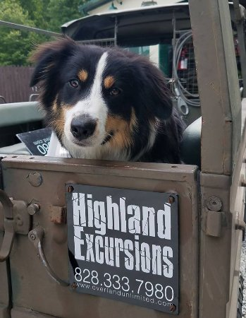Highlands, NC: Tours and hikes are pet friendly.