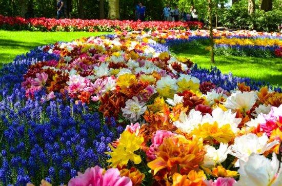 Keukenhof Gardens, Zaanse Schans...