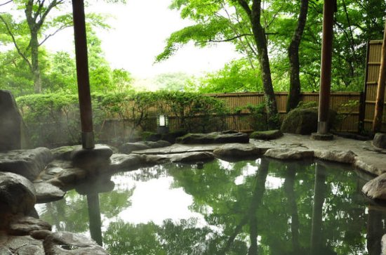 Relaxing Hot Spring Tour in Beitou...