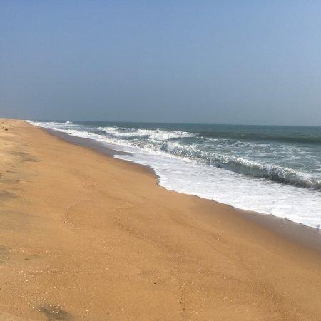 Nellore District, Indie: photo1.jpg