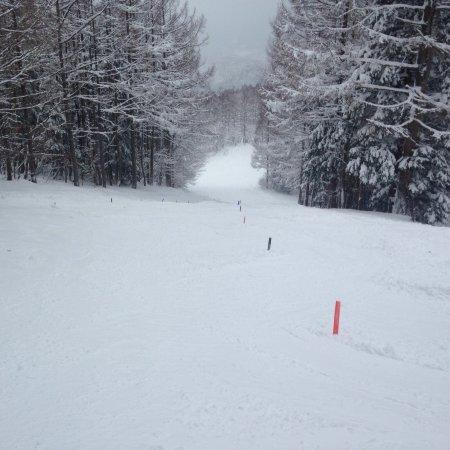 Washigatake Ski Area